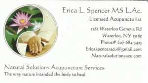 erica spencer, acupuncture, business card
